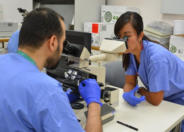 HPL Pathologists